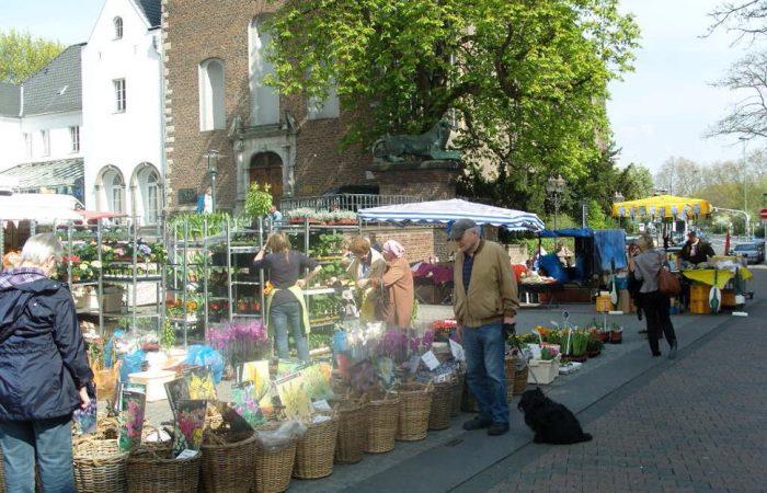 Scene of open air market
